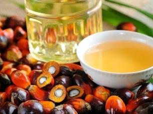 ¿El aceite de palma verdaderamente causa cáncer?