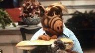 Demuestra cuánto sabes de la serie 'Alf' con este divertido test