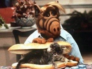 TEST ¿Cuánto recuerdas de la serie 'Alf'?