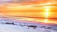 Conoce las encantadoras playas de Monterey, California en las que podrás pasar unas placenteras vacaciones.