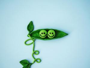 Ser verde: Ésta es la combinación para tener un verdadero platillo vegano