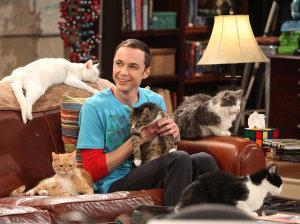 ¡Mira las primeras imágenes del spin-off de 'The Big Bang Theory'!