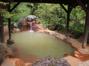 ¡Adiós estrés! Hoteles en México con aguas termales