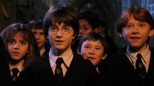¡Tremenda revelación! J. K. Rowling confiesa que existió otro Harry Potter