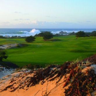 5 cosas que harán que te enamores de Monterey, California