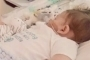 Murió Charlie Gard, el bebé británico con enfermedad terminal