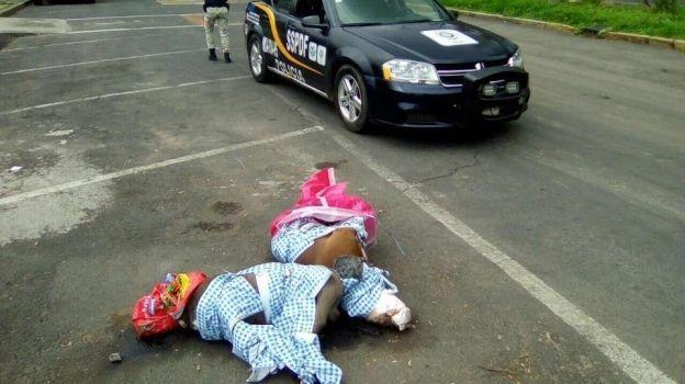 Hallan perros muertos en Coyoacán; investigan relación con muerte de una menor