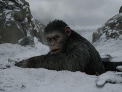 http://espectaculos.televisa.com/cine/planeta-simios-guerra-resena-andy-serkis-trilogia-final-critica/