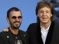 Ringo Starr y Paul McCartney lanzan canción... ¡Como en los viejos tiempos!