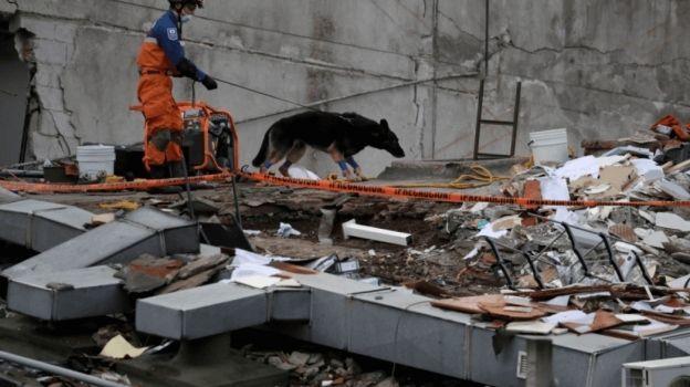 Apple se suma a México, donará un millón de dólares tras sismo