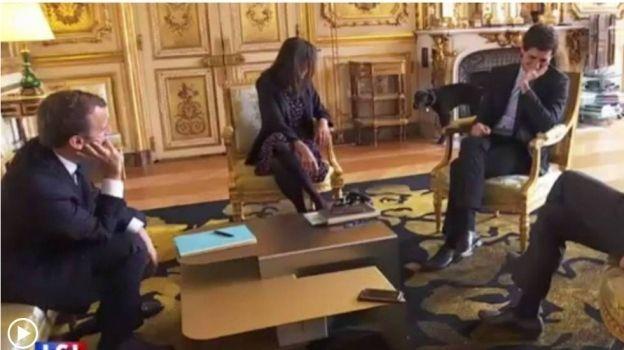 Nemo, el perro del presidente Macron se orina en plena reunión oficial